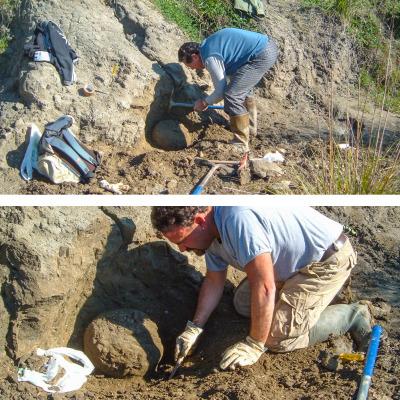 """I due membri del Gruppo AVIS Mineralogia e Paleontologia Scandicci (GAMPS) ripresi durante la scoperta di """"Brunella"""""""
