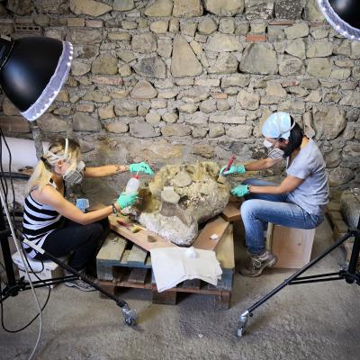 Dettaglio della postazione di lavoro su blocchi grandi illuminata ad hoc in cui si osservano strumenti di precisione utilizzati per la pulitura delle ossa e prodotti chimici per la rimozione del sedimento e il consolidamento.