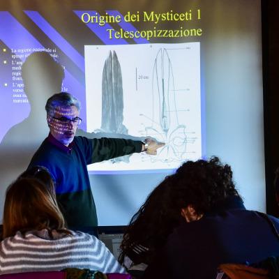Lezione teorica nell'aula del castello di Poggio alle Mura con gli studenti di Archeobioschool.